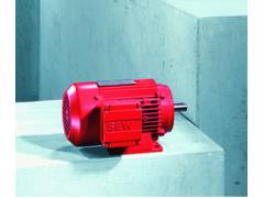SEW DT/DV series brake motor
