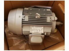 TOSHIBA series motor