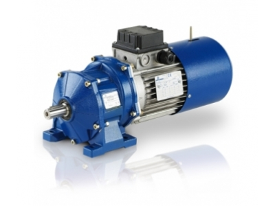 MOTOVARIO H series reducer